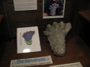 Expedition Everest Queue Yeti Museum