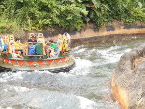 Animal Kingdom's Kali River Rapids