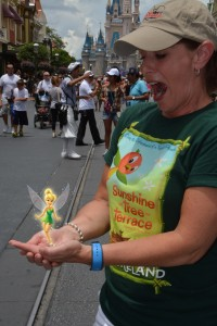 Magic Picture with Tinker Bell