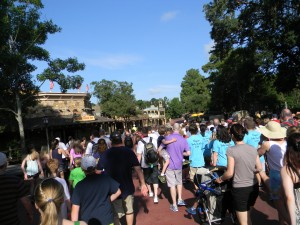 Walt Disney World Summer Crowd