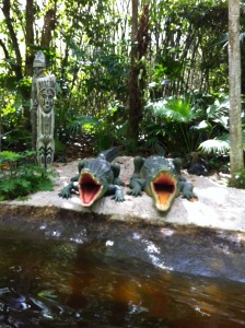 Crocodiles on the Jungle Cruise