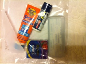 Mini First Aid Kit for Walt Disney World Travel