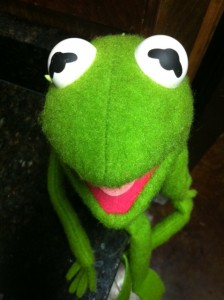 My Own Kermit