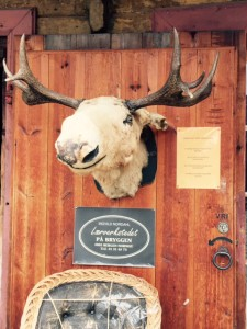 Bergen-Moose-Leather-shop