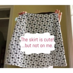 Stitch-Fix-Skirt