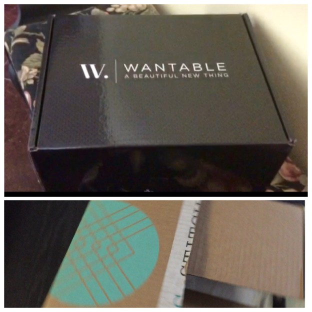 Wantable-and-Stitch-Fix-Boxes