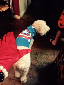 RM-Halloween-Costume-Captain-America