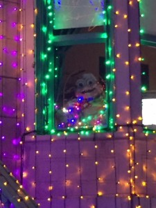 DHS-Osborne-Lights-Baby