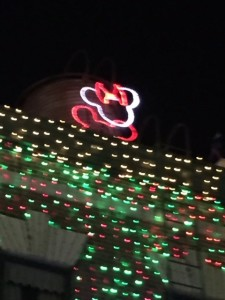 DHS-Osborne-Lights-Minnie