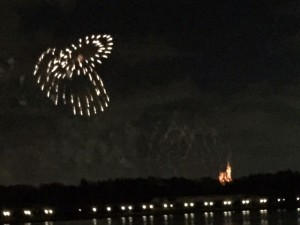 Narcoossee's view of fireworks at MK