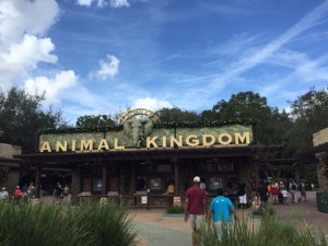 Animal Kingdom-Entrance