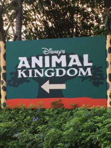 animal-kingdom-sign