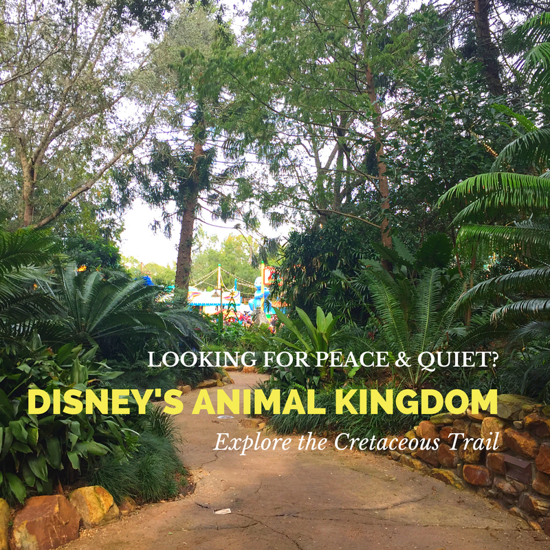 Disney's Animal Kingdom - Quietest Little Corner
