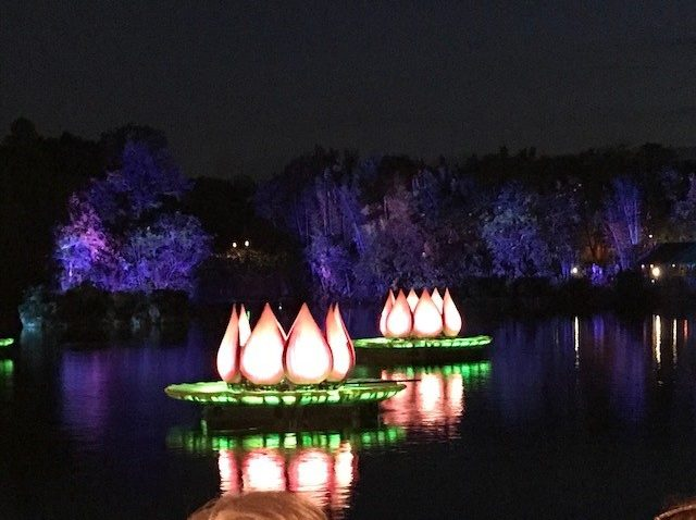 Who Would Love Disney's Rivers of Light?