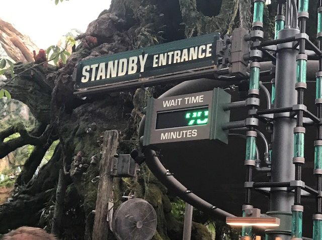 Who Would Love Disney's Flight of Passage?